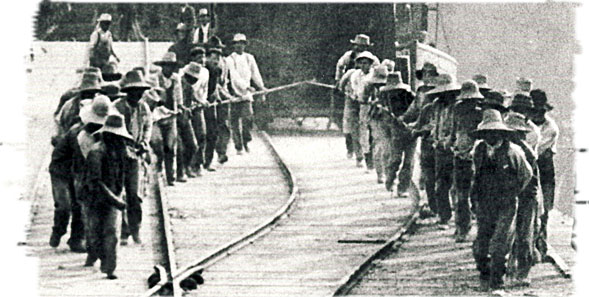 Chinese Workers at Tod Inlet, B.C.